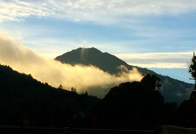 Beautiful Mt. Tam